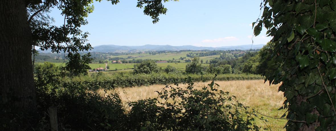 Uitzicht vanaf uw camping plek